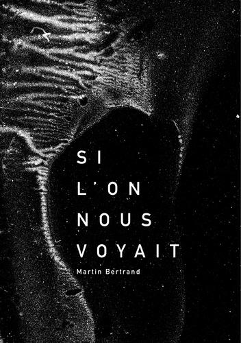 Martin Bertrand et Martin Lebettre - Si l'on nous voyait.