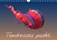 K.a. Redinard - Tendresses pastel (Calendrier mural 2020 DIN A4 horizontal) - Compositions fractales numériques (Calendrier mensuel, 14 Pages ).