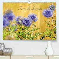 Terre du Larzac(Premium, hochwertiger DIN A2 Wandkalender 2020, Kunstdruck in Hochglanz) - Paysages du Larzac (Calendrier mensuel, 14 Pages ).pdf
