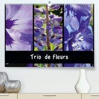 Martina Busch - Trio de fleurs (Calendrier supérieur 2020 DIN A2 horizontal) - La variété des fleurs de couleur ressemble à un arc-en-ciel. (Calendrier mensuel, 14 Pages ).