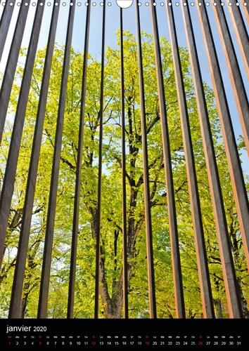Un arbre dans la ville (Calendrier mural 2020 DIN A3 vertical). Paysage urbain avec la présence d'arbres (Calendrier mensuel, 14 Pages )