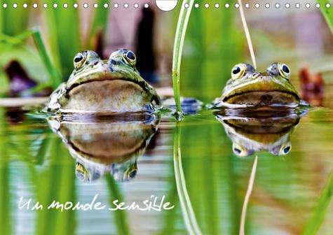 Un monde sensible (Calendrier mural 2020 DIN A4 horizontal). En macro ou au télézoom, divers animaux autour de nous... (Calendrier mensuel, 14 Pages )