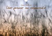 Corine Oosterlee - Une prairie au crépuscule (Calendrier mural 2020 DIN A4 horizontal) - Beauté des graminées (Calendrier mensuel, 14 Pages ).