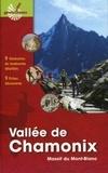 Serge Drouet et Philippe Hervé Leloup - Vallée de Chamonix - Massif du Mont-Blanc.