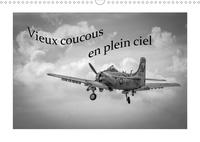 Michel Denis - CALVENDO Choses  : Vieux coucous en plein ciel (Calendrier mural 2021 DIN A3 horizontal) - Souvenirs de vieux coucous qui ne font plus des apparitions que lors de meeetings aériens. (Calendrier mensuel, 14 Pages ).
