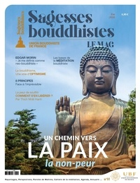 Philippe Judenne - Sagesses bouddhistes N° 14 : Un chemin vers la paix : la non-peur.
