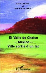 SONIA COMBONI - El Valle de Chalco-Mexico-ville sortie d'un lac.