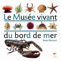 Sonia Dourlot - Le musée vivant du bord de mer.