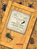 Sonia Dourlot - Petite collection d'insectes de nos régions.