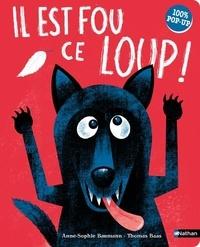 Sophie Baumann et Thomas Baas - Il est fou ce loup ! 100% pop-up.