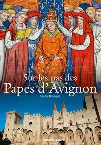 Sophie Cassagnes-Brouquet et Emmanuel Pain - Sur les pas des papes d'Avignon.