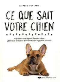 Sophie Collins - Ce que sait votre chien - Explorez l'intelligence de votre chien grâce aux dernières découvertes en cognition animale.