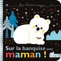 Sejung Kim et Sophie De Mullenheim - Mes histoires imagiers - sur la banquise avec Maman !.