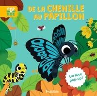 Sophie Dussaussois et Marta Sorte - De la chenille au papillon.