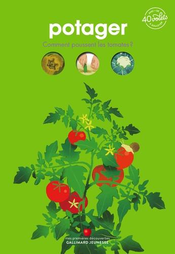 Potager. Comment poussent les tomates ? Avec + de 40 volets à soulever