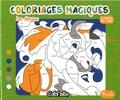 Sophie Marie - Les chevaux - Coloriages magiques.