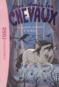 Sophie Thalmann et Natacha Godeau - Mes amis les chevaux Tome 21 : La grande aventure d'Andalou.