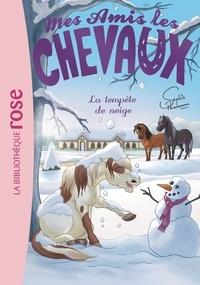 Sophie Thalmann - Mes amis les chevaux Tome 25 : La tempête de neige.