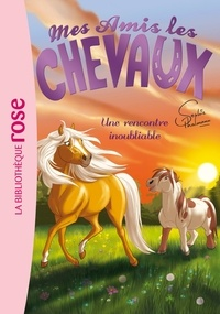 Sophie Thalmann et Natacha Godeau - Mes amis les chevaux Tome 6 : Une rencontre inoubliable.