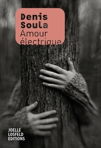 Soula Denis - Amour électrique.