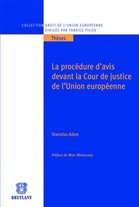 Lesmouchescestlouche.fr La procédure d'avis devant la cour de justice de l'Union européenne Image