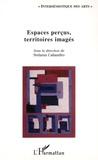 Stéfania Caliandro - Espaces perçus, territoires imaginés en art. 1 Cédérom