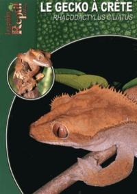 Stefanie Bach - Le gecko à crête de Nouvelle-Calédonie - Rhacodactylus ciliatus.