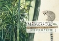 Stefano Faravelli - Madagascar, stupeur verte - Carnet d'un voyage en forêt équatoriale.