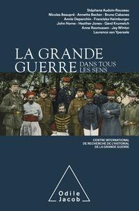Stéphane Audoin-Rouzeau et Nicolas Beaupré - La Grande Guerre dans tous les sens.