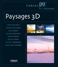 Stéphane Belin et Renaud Bellefon - Paysages 3D.