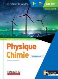 Stéphane Boulet - Physique Chimie 1re/Tle Bac Pro Groupement 1.