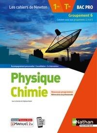 Stéphane Boulet - Physique Chimie 1re/Tle Bac Pro Groupement 6.