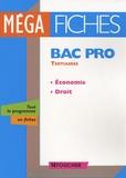 Stéphane Bujoc et Emmanuelle Bujoc - Economie-Droit Bac pro tertiaires.