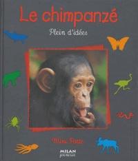 Stéphane Frattini - Le chimpanzé - Plein d'idées.