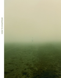 Stéphane Ibars - How to disappear.