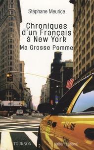 Stéphane Meurice - Chroniques d'un Français à New York.