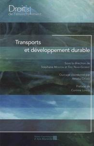Stéphane Mouton et Eric Naim-Gesbert - Transports et développement durable.