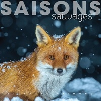 Stéphane Raimond - Saisons sauvages.