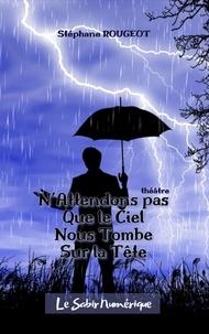 Stéphane Rougeot - N'attendons pas que le ciel nous tombe sur la tête.