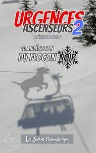 Stéphane Rougeot - Urgences Ascenseurs 2 : La Malédiction du Flocon Noir.