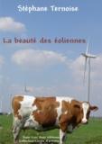 Stéphane Ternoise - La beauté des éoliennes.