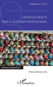 Stéphane Tessier - L'interculturalité dans le quotidien professionnel.