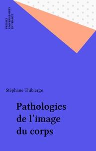 Stéphane Thibierge - .