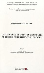 Stéphanie Brunengo-Basso - L'émergence de l'action de groupe, processus de fertilisation croisée.