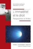 Stéphanie Fournier - L'immatériel et le droit - Perspectives et limites.