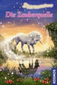 Sternenschweif 27. Die Zauberquelle.