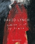 Stijn Huijts - David Lynch - Someone is in my House.