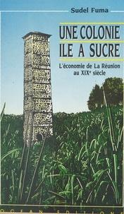 Sudel Fuma - Une colonie île à sucre : l'économie de La Réunion au XIXe siècle.
