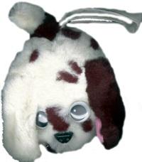 Susannah Bradley et Jenny Tulip - Charlie, le chien turbulent.