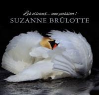 Suzanne Brûlotte - Les oiseaux ... une passion !.